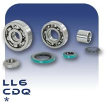 LL6 Bearing Kit - Steel