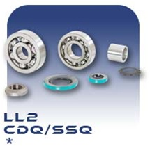 LL2 PC Pump Bearing Kit