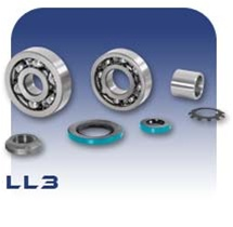 LL3 PC Pump Bearing Kit