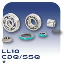 LL10 PC Pump Bearing Kit
