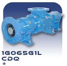 1G065G1L Progressive Cavity Pump