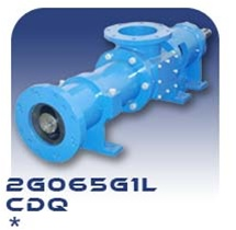 2G065G1L Progressive Cavity Pump