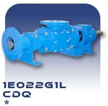 1E022G1L Progressive Cavity Pump