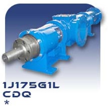 1J175G1L Progressive Cavity Pump