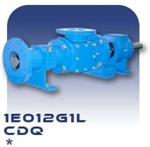 1E012G1L Progressive Cavity Pump