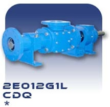 2E012G1L Progressive Cavity Pump